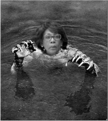 Waters1.jpg