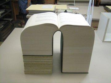 Largest book open.jpg