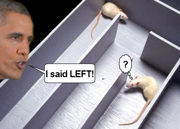 I said left.jpg