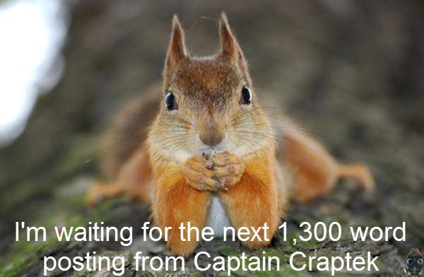amazed-squirrel.jpg