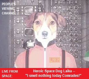 Laika Reports In.jpg