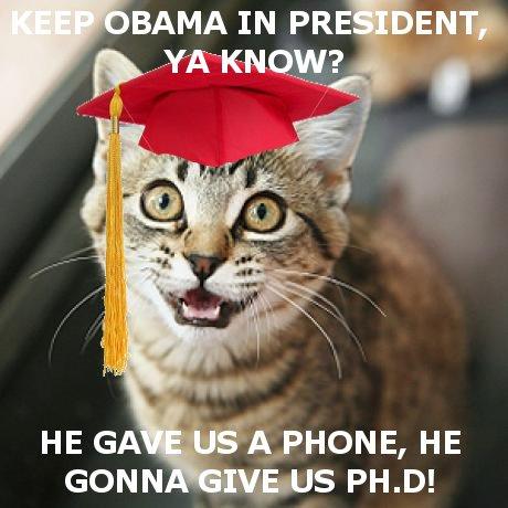 graduatecat.jpg
