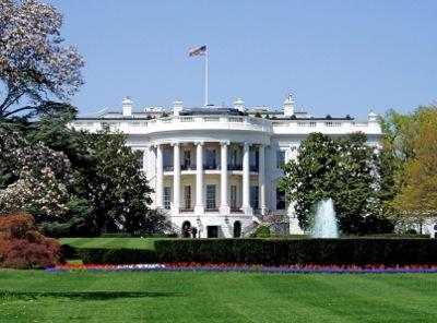 white house1.jpg