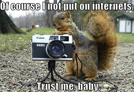 Squirrel (13).jpg