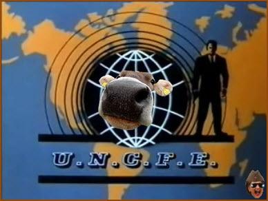 uncfe1.jpg