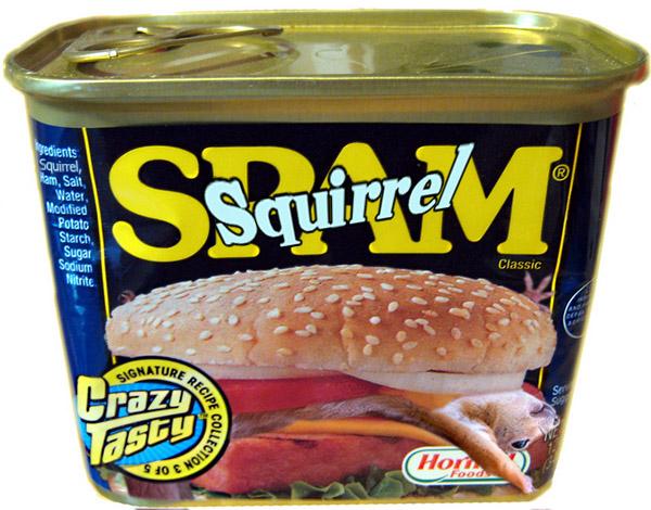 SquirrelSpam.jpg