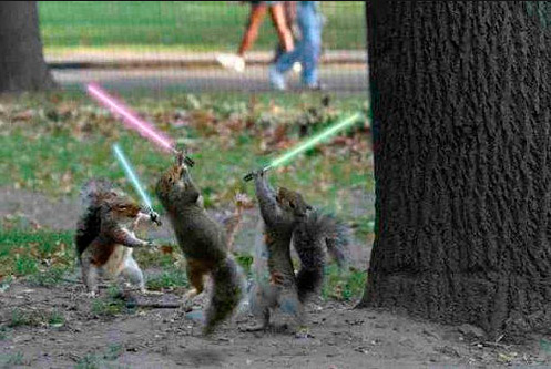SquirrelsWithLightsabers.jpg