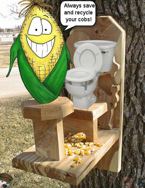29167-captain-crapteks-corn-cob-throne 2.jpg