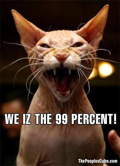 Cat_LOL_Cheezburger_99.jpg
