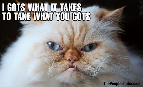 Cat_LOL_Cheezburger_gots.jpg