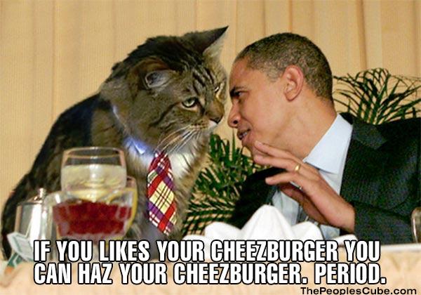 Cat_LOL_Cheezburger_Obama.jpg