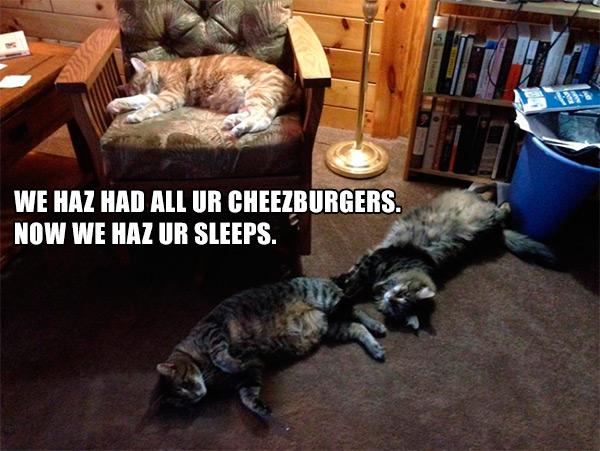 HazHadCheezburgers.jpg