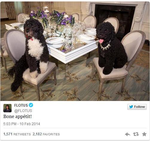 FLOTUS_tweet_dogs.jpg