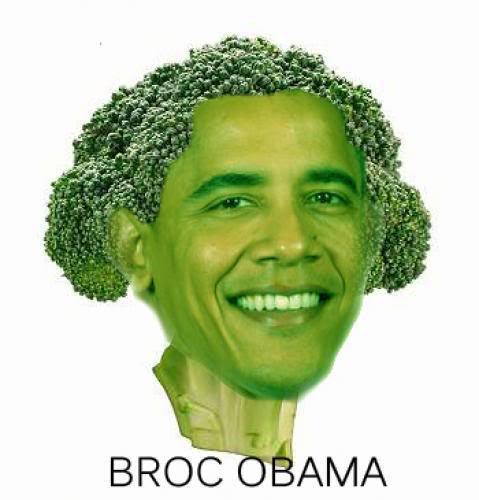 Broc_Obama.jpg