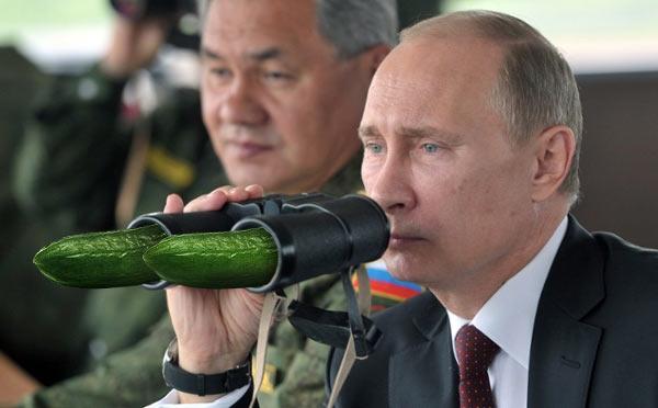 Putin_Cucumbers.jpg