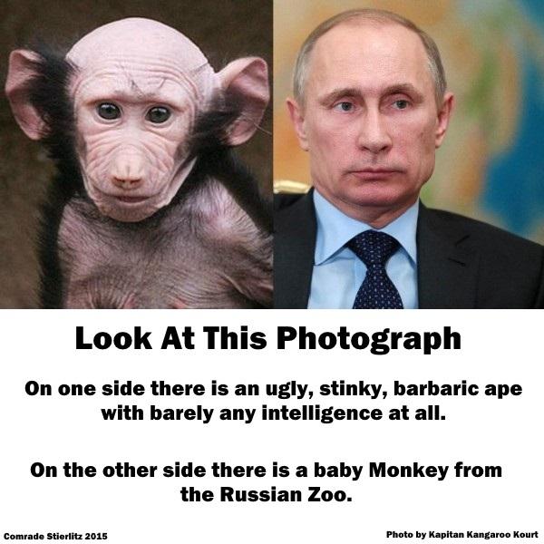 PutinIsAnApe.jpg