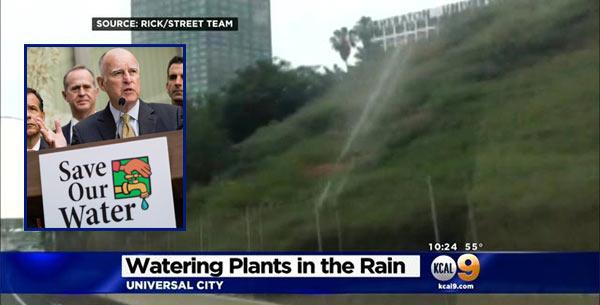 Brown_Cal_Water_Rain.jpg