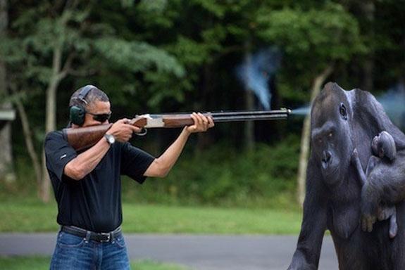 obamashooting gorrila .jpg