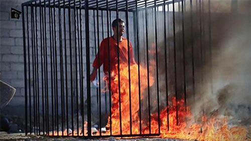 ISIS_Burn_Cage.jpg
