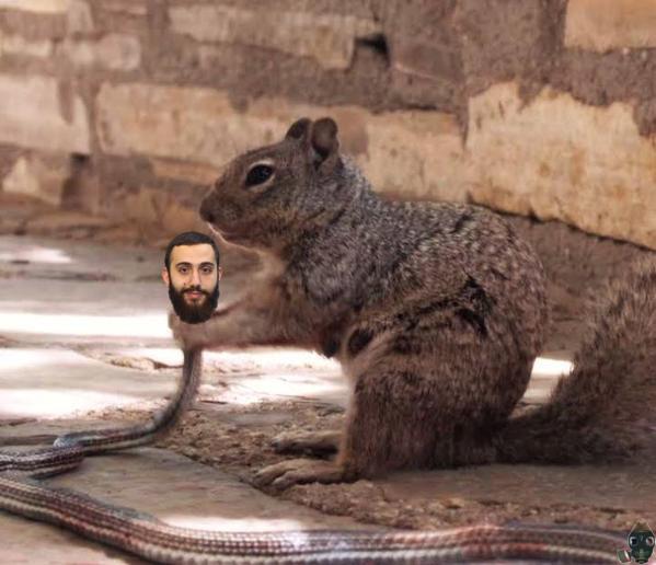 craptek-kills-a-muhammad-youssef-abdulazeez-snake.jpg