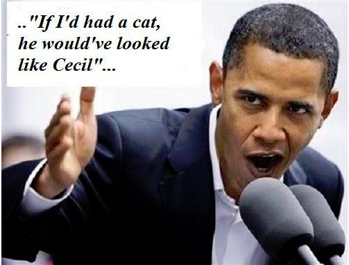 Obama_IfIhadacat.jpg