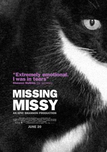 the_cat_is_missying_2.jpg