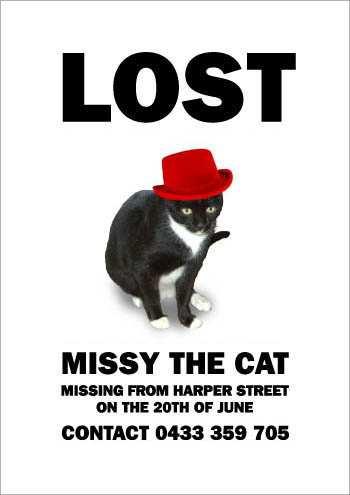the_cat_is_missying_7.jpg