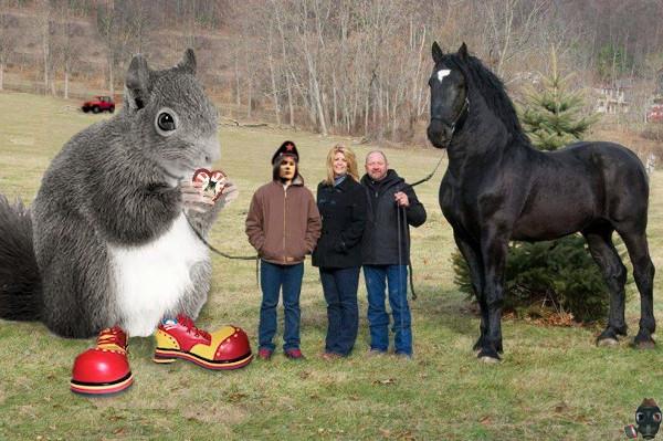 olga-please-return-my-high-squirrel.jpg