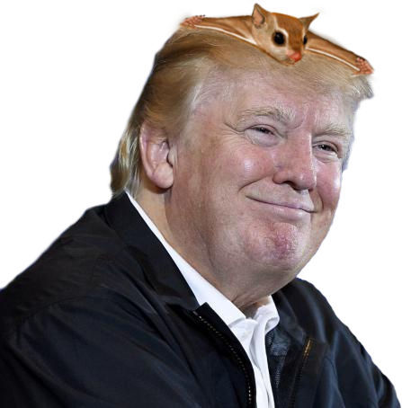 donald-trump-and-captain-craptek.png