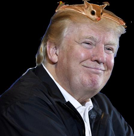 donald-trump-and-captain-craptek.png