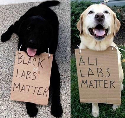 Black_Labs_Matter.jpg