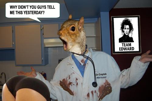 squirrel doctor.jpg