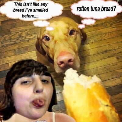 dog eating bread copy.jpg