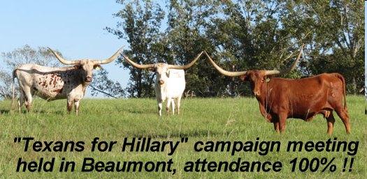 TexansForHillary.jpg