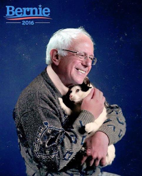 Berniecat.jpg