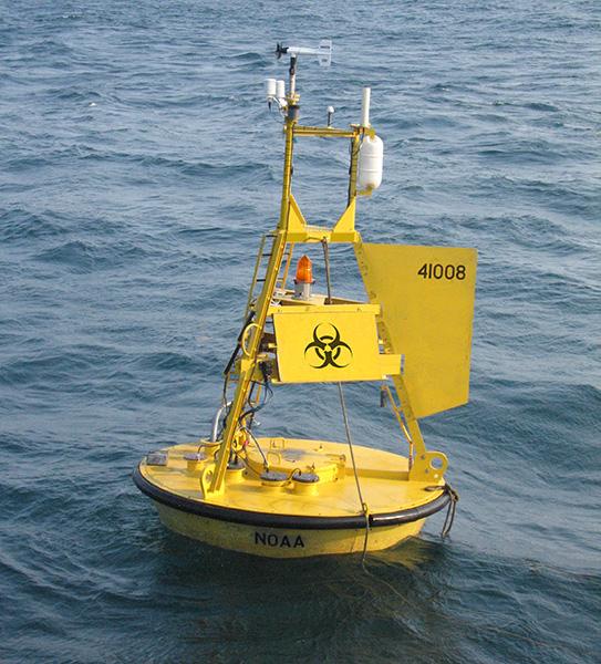 buoy oh buoy.jpg