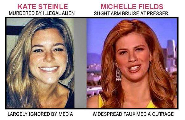 Michelle_Fields_Comparison.jpg
