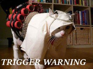 triggerwarning.jpg