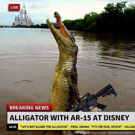 Alligator_AR15.jpg