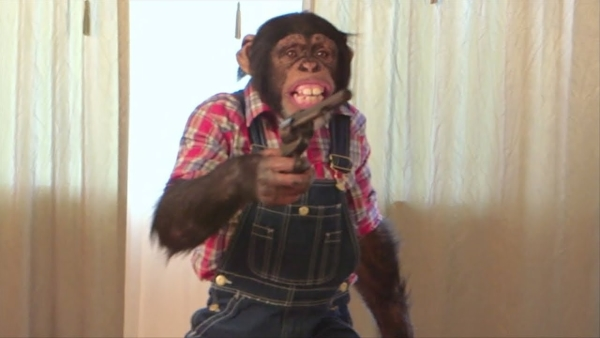 monkeywithrevolverRESIZED.jpg