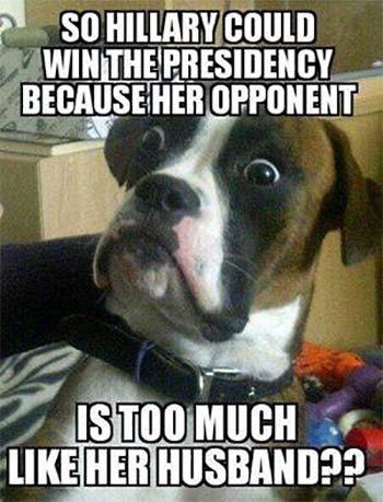 Dog_Trump_Hillary.jpg