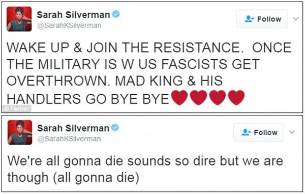 silverman-tweet.jpg