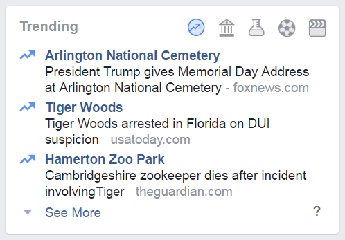Tiger Woods DUI.png