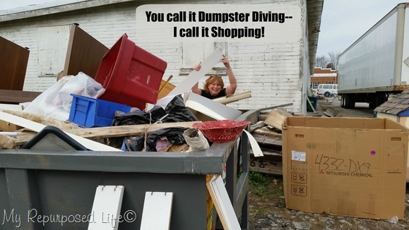 you-call-it-dumpster-diving-1.jpg