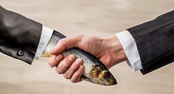 Fish_Handshake.jpg
