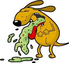 Dog Puking.jpg