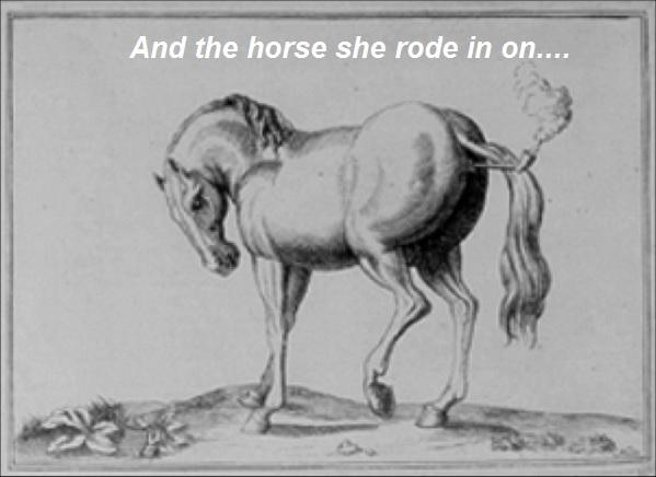 Smoke horse.jpg