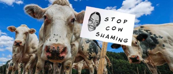cow shaming.jpg