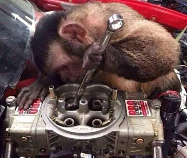 Monkey_Wrench.jpg