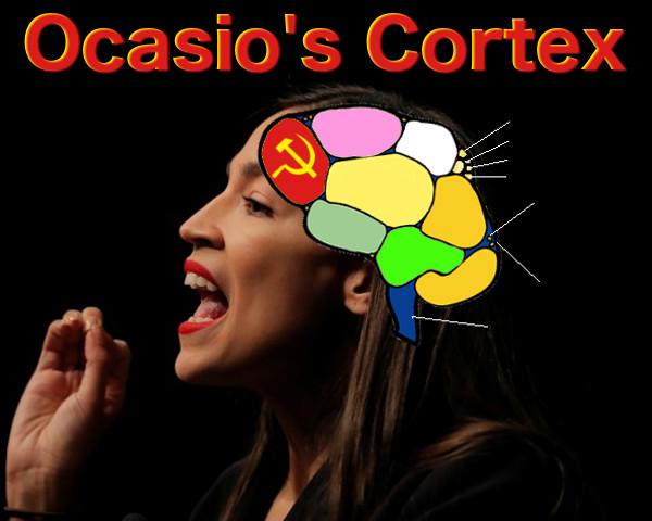 ocasios-cortex-blank.jpg